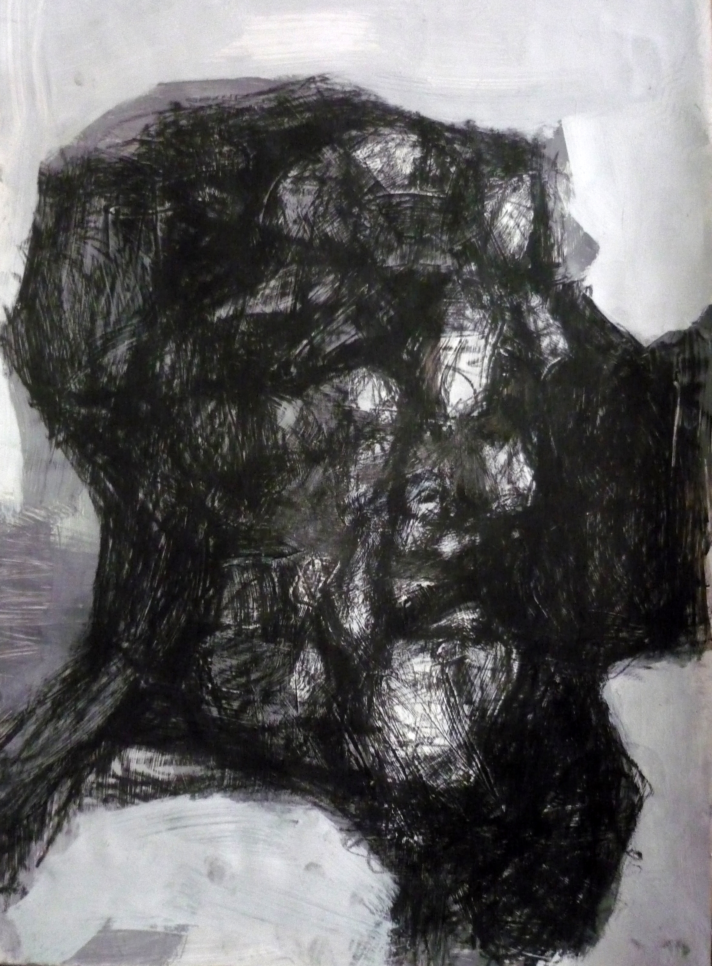 profil-u-profilu-50h35-tempera-i-ugljen-na-papiru-2014
